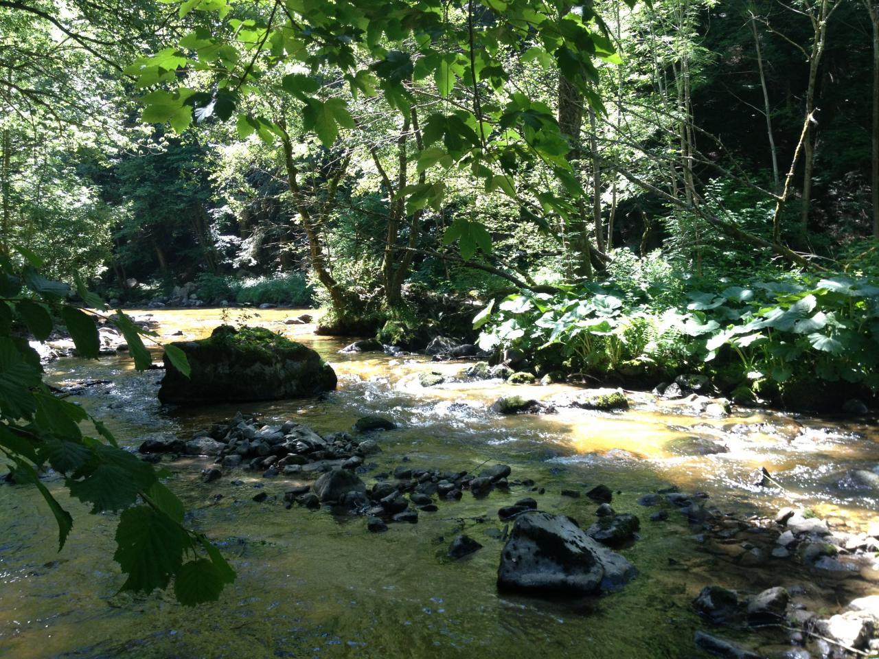La rivière de la semène